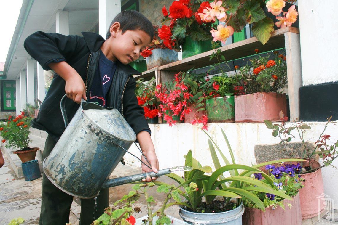 Im Jhamtse Gatsal helfen alle, die Pflanzen grün und blühend zu halten.