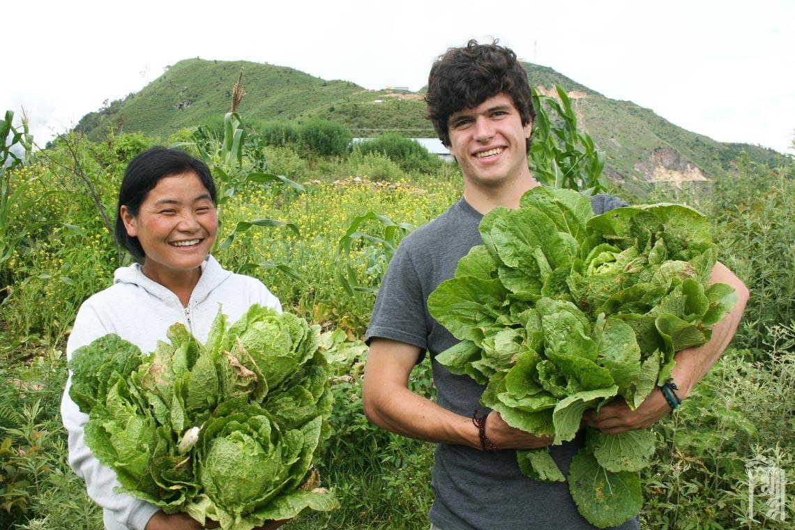 Der freiwillige Sommerhelfer Max Babigian hilft der Hausmutter Sumcho bei einer reichlichen Ernte in einem der JGCC-Gärten.