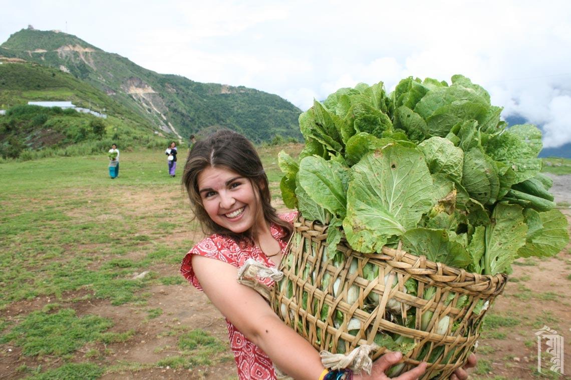 Freiwillige Helferin Sandy Wood zeigt einen großen Korb mit Salat, bei dessen Ernte in den Gärten von Jhamtse Gatsal sie mitgeholfen hat.